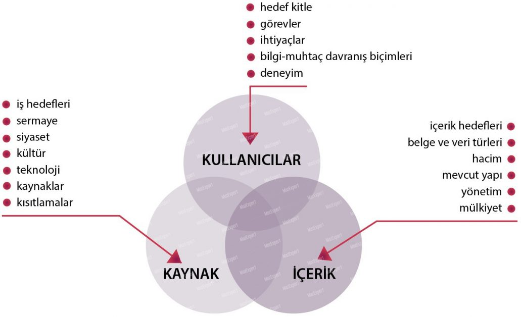 bilgi ekolojisi